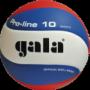 Míč volejbal Gala BV 5121 S -
